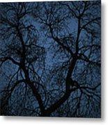 Black Veined Sky Metal Print
