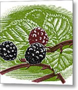Blackberries, Woodcut Metal Print by Gary Hincks