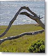 Bleached Wood And Diamond Waves Metal Print