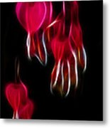 Bleeding Hearts 02 Metal Print