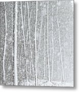 Blizzard Blankets Trees In Snow Metal Print