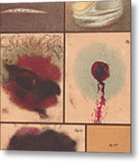 Bloodstain, Blisters, Bullet Holes, 1864 Metal Print by Science Source