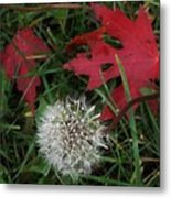 Blow Away Metal Print