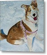 Blue - Siberian Husky Dog Painting Metal Print