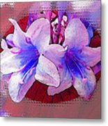 Blue And Red Weigela Window Metal Print