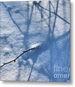 Blue Blackberry Shadows Metal Print