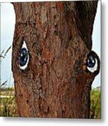 Blue Eyed Pine Metal Print