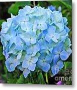 Blue Garden Flower Metal Print