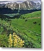 Blue Grouse Pass, Willmore Wilderness Metal Print