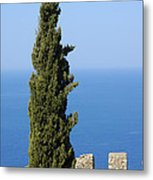 Blue Ocean And Sky Green Tree - Serene And Calming  Metal Print