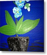 Blue Orchid 2 Metal Print by Pretchill Smith