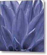 Blue Petals Metal Print by Al Hurley