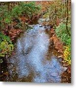 Blue Ridge Mountain Stream Too Metal Print