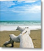 Blue Sea And Sky With Log On The Beach Metal Print