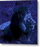 Blue Simba Metal Print