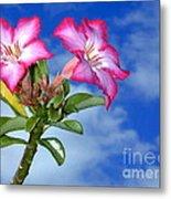 Blue Sky Pink Flower Metal Print