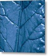 Blue Songs Metal Print