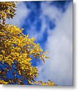 Blue White And Gold Metal Print