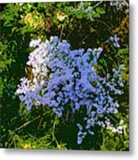 Blue Wild Flowers Metal Print