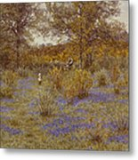 Bluebell Copse Metal Print