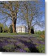 Bluebells In The Pleasure Grounds, Emo Metal Print