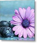 Blueberries And Daisy Metal Print by Sandra Cunningham