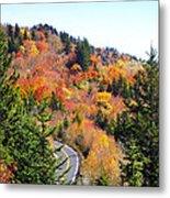 Blueridge Parkway View Near Hwy 215 Metal Print