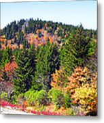 Blueridge Parkway View Near Mm 423 Metal Print