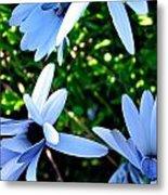 Bluey Twinkles Metal Print