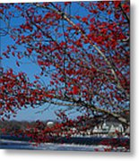 Boat House Row Peeking Through Metal Print by Lisa Phillips