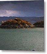 Boat On Loch Sunart, Scotland Metal Print
