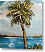 Boater On River Metal Print