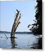 Boaters Nightmare Metal Print by Kym Backland