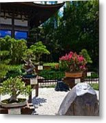 Bonsai Garden Metal Print