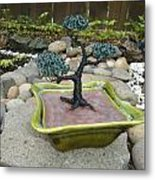 Bonsai Tree Green Medium Metal Print