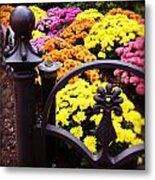 Boston Flowers Metal Print