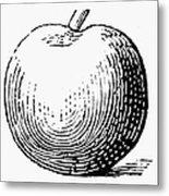 Botany: Apple Metal Print