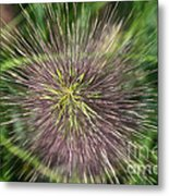 Bottle Brush By Nature Metal Print