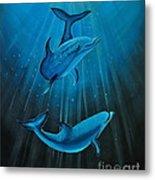 Bottle-nose Dolphins Metal Print