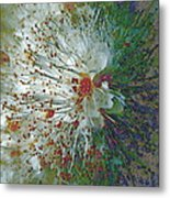Bouquet Of Snowflakes Metal Print