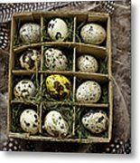 Box Of Quail Eggs Metal Print