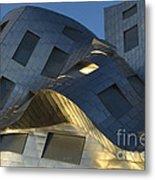 Brain Institute Building 9 Metal Print