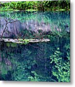Branch And Reflections At Alley Spring State Park Metal Print