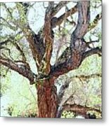 Branch Out Metal Print