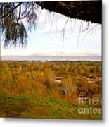 Branch Over River Bed Metal Print