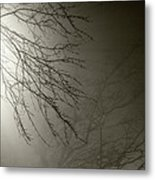 Branches In The Fog Metal Print