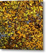 Branches Of Gold Metal Print