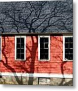 Branching Out Metal Print by Mark J Seefeldt