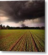 Breaking Loose Metal Print