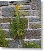 Brick Wall Flowers Metal Print